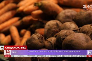 В каких условиях продают продукцию украинские фермеры