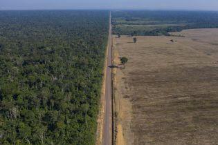 Висадження дерев може завдати більше негативного впливу у боротьбі зі зміною клімату
