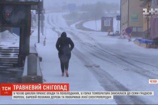 Травневий снігопад: у Чехію циклон приніс опади та похолодання