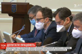 Верховная Рада в ослабленных условиях карантина вернулась к работе в обычном режиме