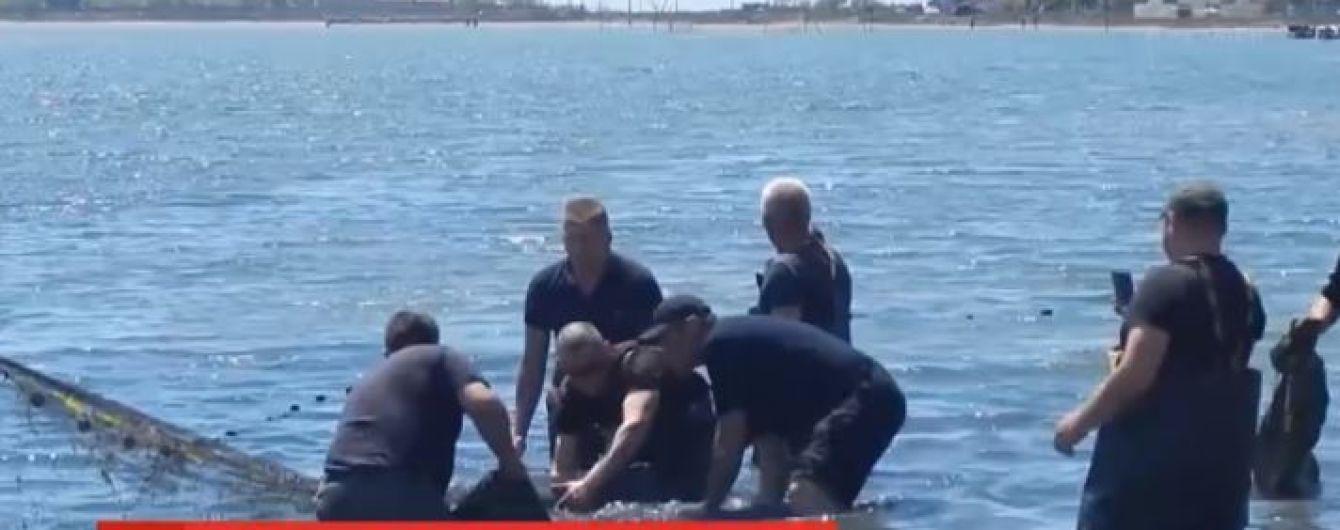 Рятувальна операція дельфіна в Херсонській області отримала неочікуваний розвиток: тварин стало більше