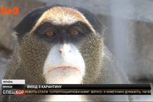 Тварини із Вінницького зоопарку впали у депресію через відсутність відвідувачів