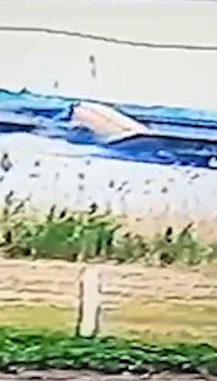 Укравтодор оприлюднив відео моменту обвалу мосту з фурою
