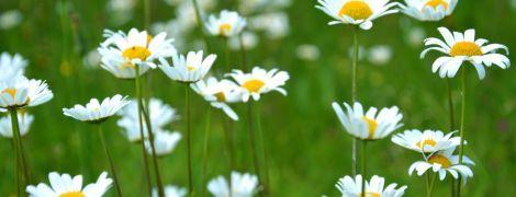 24 мая 2020 года: какой сегодня праздник, приметы и День ангела