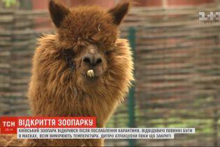 Оновлений зоопарк: як змінився київський звіринець за час карантину