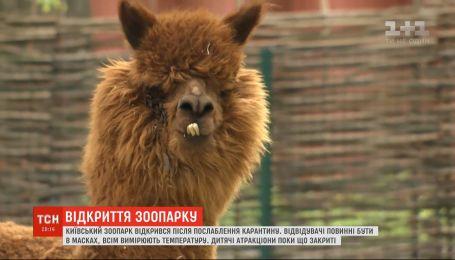 Обновленный зоопарк: как изменился киевский зверинец за время карантина