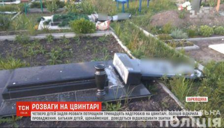 Четверо дітей задля розваги потрощили 13 надгробків на цвинтарі у Харківській області