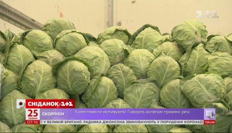 Доплаты пенсионерам, рабочие визы для украинцев в Чехии и дешевая молодая капуста – Экономические новости