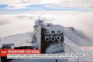 На високогір'ї Карпат випав сніг - на більшості схилів його шар сягає 15 см, подекуди втричі більше