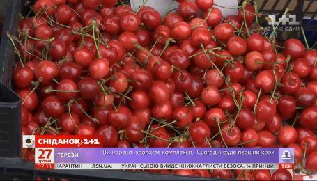 Скільки коштує рання черешня на українських ринках — Економічні новини