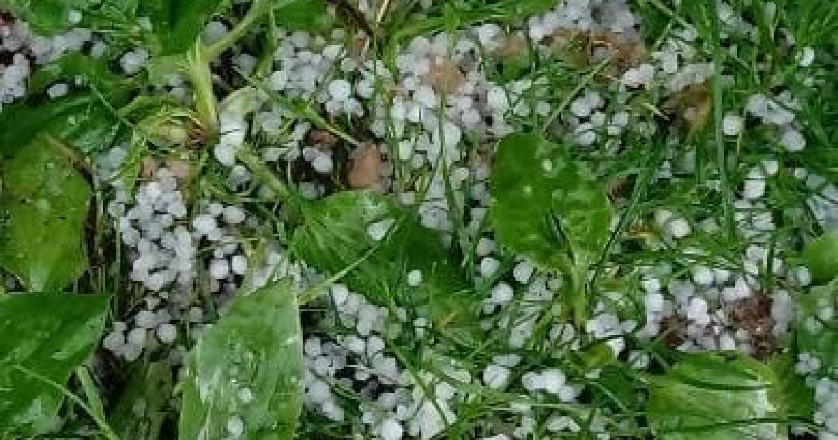 Затопленные дома и поврежденный урожай: Украиной пронесся мощный ливень с обильным градом