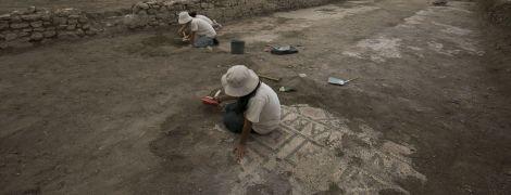 В Италии под виноградником раскопали древнеримский пол из мозаики