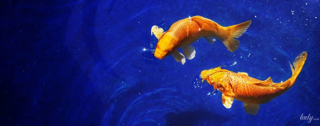 Гороскоп на август 2020 года для Рыб: от поклонников придется отбиваться