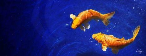 Гороскоп на липень 2020 року для Риб