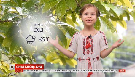 Прогноз погоди на 30-31 травня від маленької Фросі
