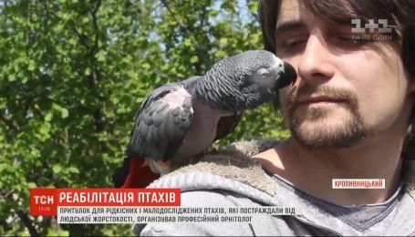 Орнитолог с Кропивницкого организовал центр реабилитации для птиц, которых обидели хозяева