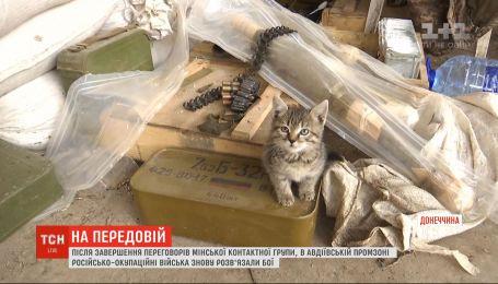 После завершения переговоров ТКГ в Авдеевский промзоне снова развязались бои