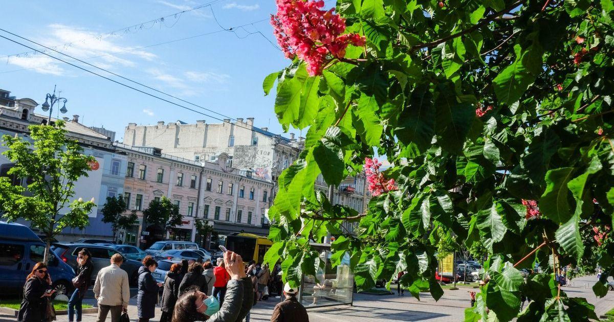 Киев резко подскочил в рейтинге самых дорогих городов для эмигрантов