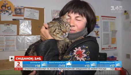 Мама Єгора Гордєєва забрала з притулку кота Платона