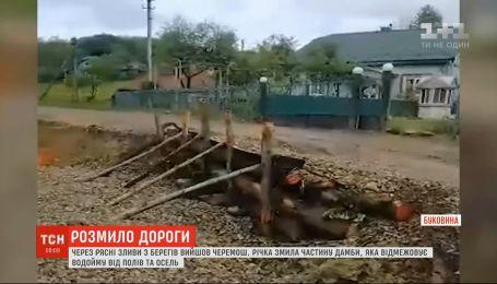 На Буковине из-за постоянных ливней из берегов вышли реки