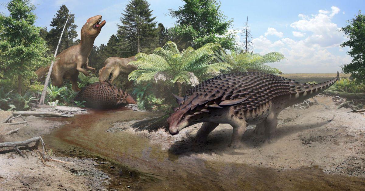 Вчені визначили раціон анкілозавра завдяки добре збереженій їжі в броні 110 млн років потому