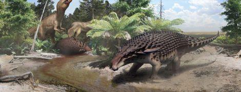Ученые определили рацион анкилозавра благодаря хорошо сохранившейся пище в брони 110 млн лет спустя