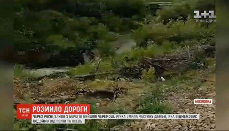 Река Черемош уничтожила часть дамбы, которая отделяет водоем от полей и домов