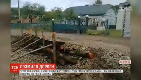 На Буковині через постійні зливи із берегів вийшли річки
