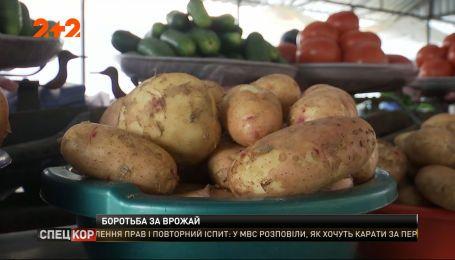 Фермерські проблеми: чи матиме Україна що їсти восени