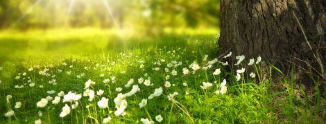 5 июня 2020 года: какой сегодня праздник, приметы и День ангела