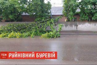 Повалені дерева і пошкоджені авто: потужний буревій накоїв лиха у Сумах