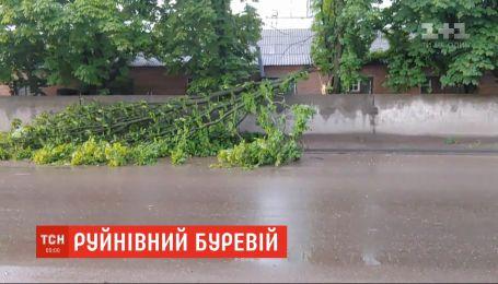 Поваленные деревья и поврежденные авто: мощный ураган натворил беды в Сумах