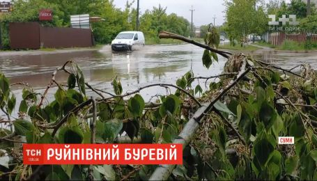 Повалені дерева, потрощені паркани та обірвані дроти: у Сумській області вирував буревій