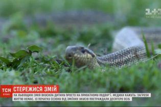 Змеиная опасность: из-за холодной весны в Украине активность пресмыкающихся только началась
