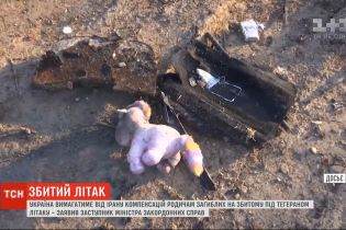 """Украина потребует от Ирана компенсаций для родственников погибших на сбитом под Тегераном """"Боинге"""""""