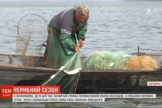 В Вилково Одесской области из-за теплой зимы не ловится знаменитая дунайская сельдь