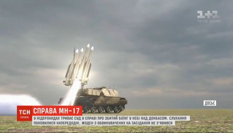 """Дело МН-17: суд пришел к выводу, что """"Боинг"""" был сбит российским БУКом"""