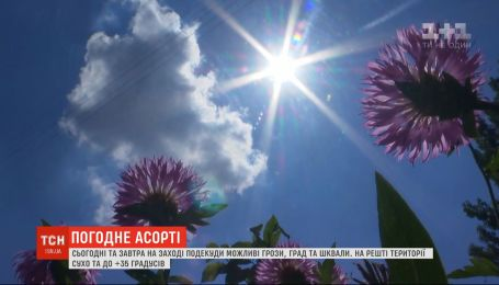 Погода в Україні: на заході попереджають про опади, на решті території - літня спека
