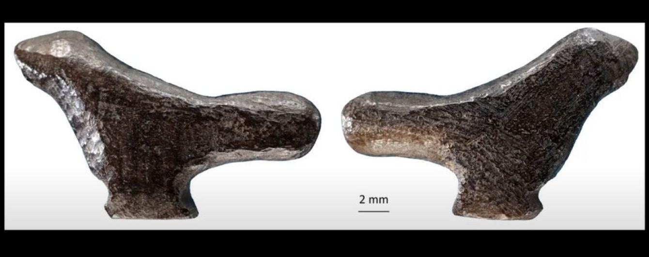 У Китаї знайшли найдавніший витвір мистецтва: крихітну пташку віком 13 тисяч років