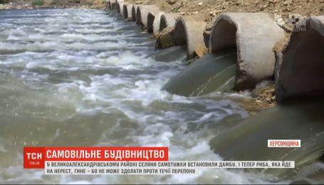 Селяне самостоятельно сделали переправу через реку, в которой массово гибнет рыба