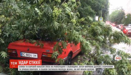 Вирвані з корінням дерева та зірвані дахи: негода накоїла лиха у Рівненській та Львівській областях