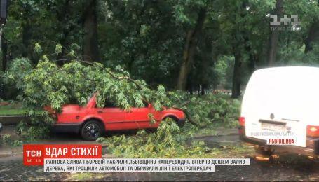 Злива та буревій накоїли лиха у Рівненській і Львівській областях