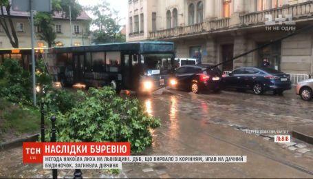 Наслідки негоди: у Львові дівчину вбило дерево, а на Волині зривало дахи