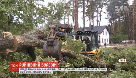 Негода накоїла лиха у Львівській області