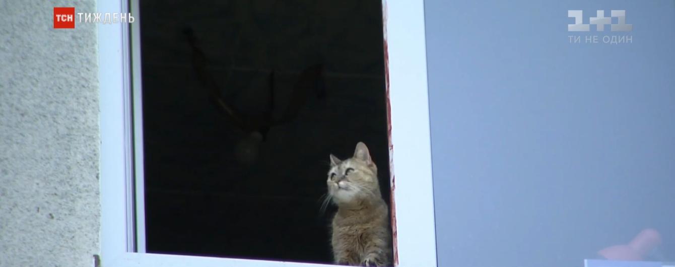 В Киеве 3-летний малыш выпал с окна на девятом этаже: ребенок держался за москитную сетку