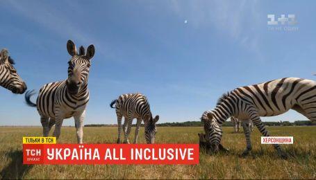 Україна All inclusive: ТСН розвідала найживописніші куточки Херсонської області