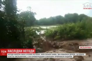 У Хмельницькій областісильна злива знищила городину та замулила будинки