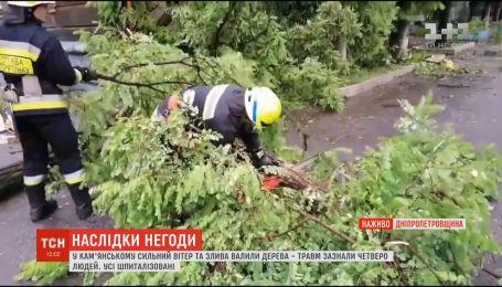 Ураган повалил деревья и травмировал людей в Днепропетровской области