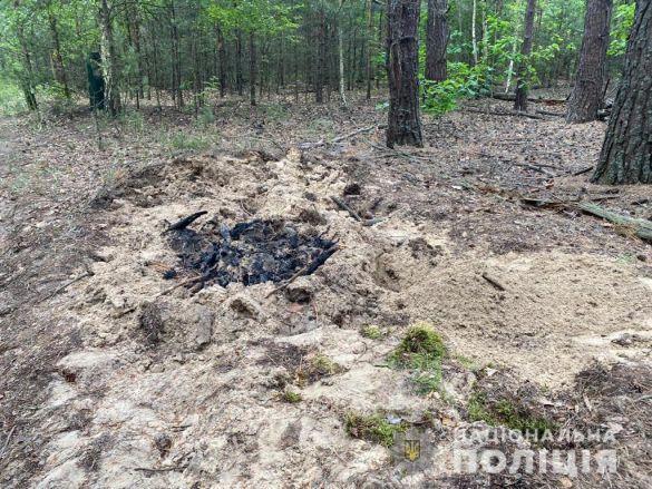 Закопані тіла у лісі