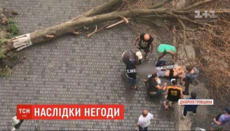 Знеструмлені села та вирвані дерева: у різних куточках України долають наслідки негоди
